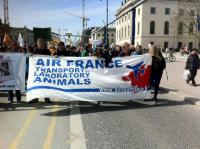 Air France Demo in Berlin 1