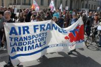 Air France Demo in Berlin 2