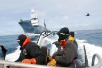 Sea Shepherd strikes the Yishiin Maru No2